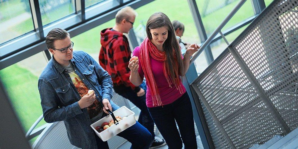 rakennettu ymparisto opiskelijat syovat omenoita portaita noustessa