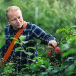 taydennyskoulutus mies katselee omenapuuta
