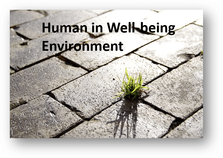 Human in well-being environment