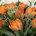 Oransseja tulppaaneja kimpussa