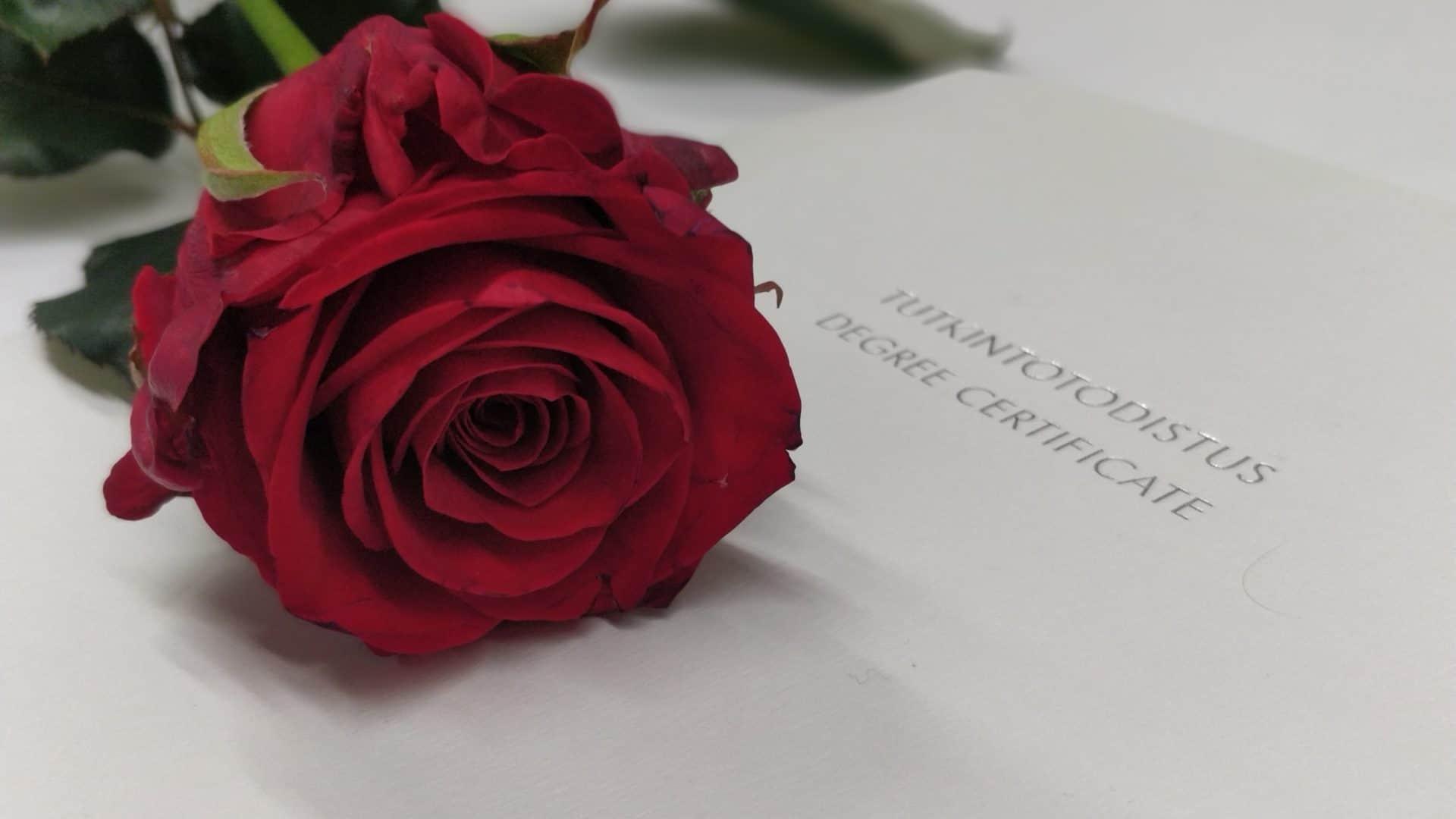 ruusu ja tutkintotodistus