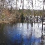 Ollinjoki huhtikuussa