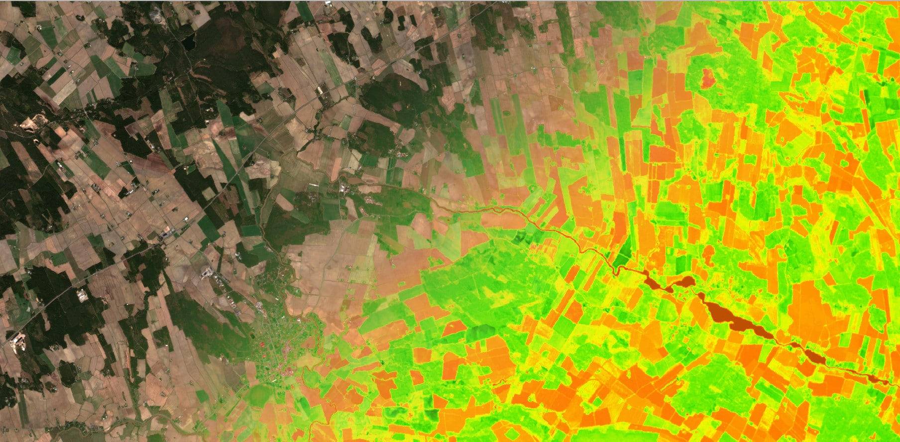 Sentinel-2 satellite imagery overlaid by normalized different vegetation index. Contains modified Copernicus Sentinel data (2020–2021)