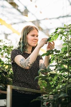 nainen tutkii kasvia kasvihuoneella